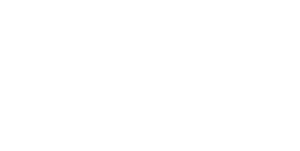 Lake Home Inspection Service